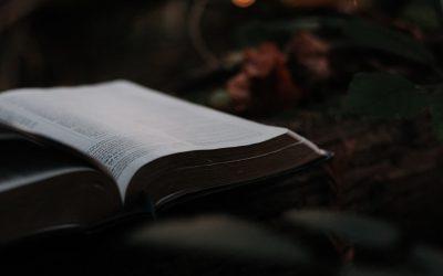 Oversight in the Local Church: The Joyful Privilege Pastor Pete Beck III
